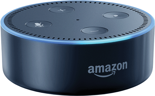 amazon basics y alexa